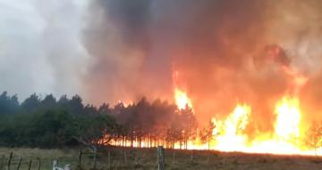 incendio en santa ana.jpg