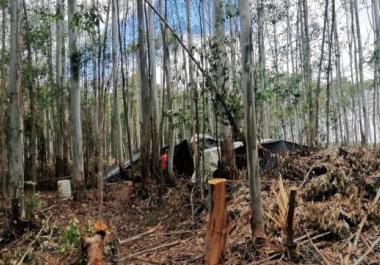 Detenidos por explotar a siete obreros y un niño en un campo