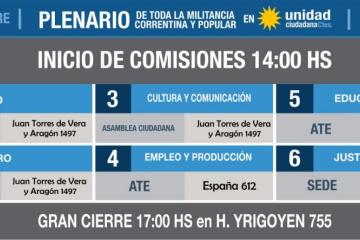 UC Plenario.jpg