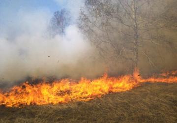 Incendios-34-e1598544951944.jpg