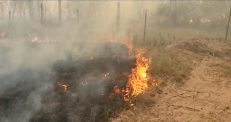 Los macabros detalles del cadáver  hallado en un incendio en Corrientes