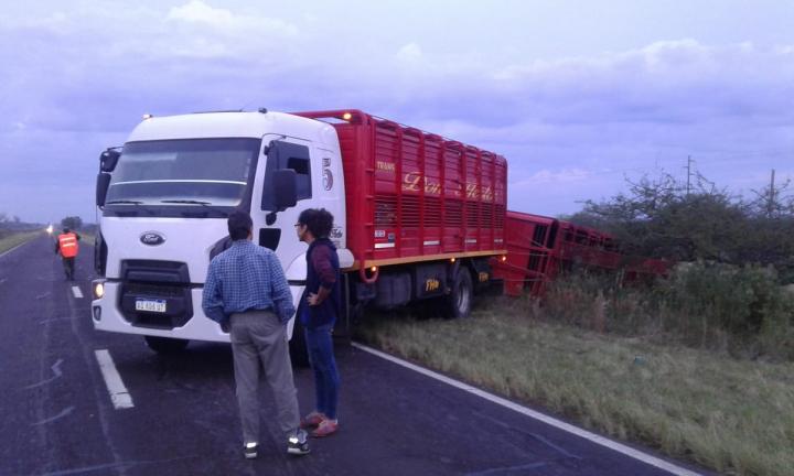 duraznillo camion 1.jpg