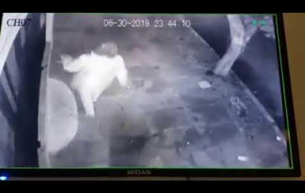 Video viral en Corrientes: Graban a una mujer arrojando sal frente a negocios
