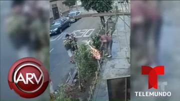 Hombre recibe corrientazo mientras arreglaba el jardín de su casa   Al Rojo Vivo   Telemundo