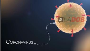 Infografía interactiva Lo que debe saber sobre la pandemia del Coronavirus.png