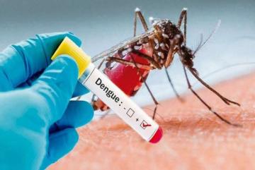 dengue.jpeg