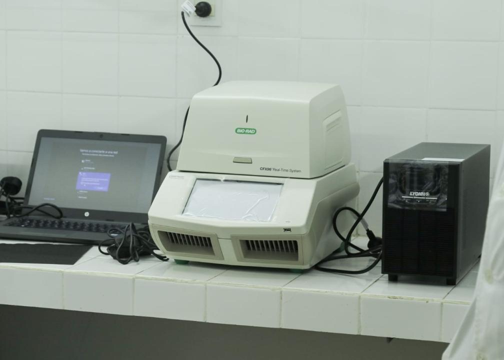 IMG-20200731-WA0029.jpg
