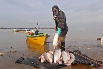 pesca santa fe.jpg