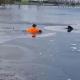Video: saltó a un lago congelado para rescatar a un perro