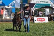 Corrientes: comenzó la Exposición Nacional de Razas bovinas y equinas