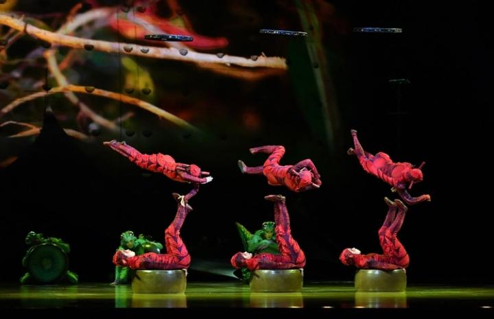 OVO-Cirque-Du-Soleil-6.jpg