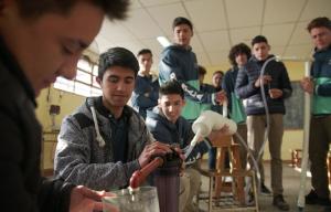 Orgullo: Un equipo docente correntino entre los 10 finalistas de Maestros Argentinos 2019