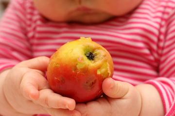 fruta-569x427.jpg