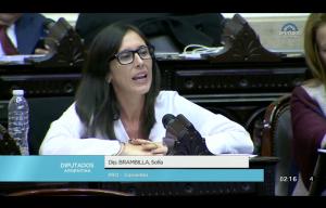 """Brambilla sobre las elecciones nacionales: """"A los argentinos nos les conviene dar marcha atrás"""""""