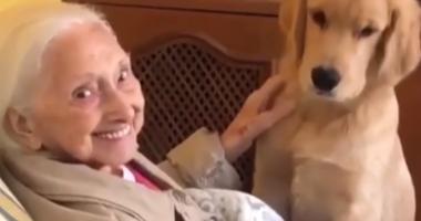 abuelita-con-el-perro.jpg
