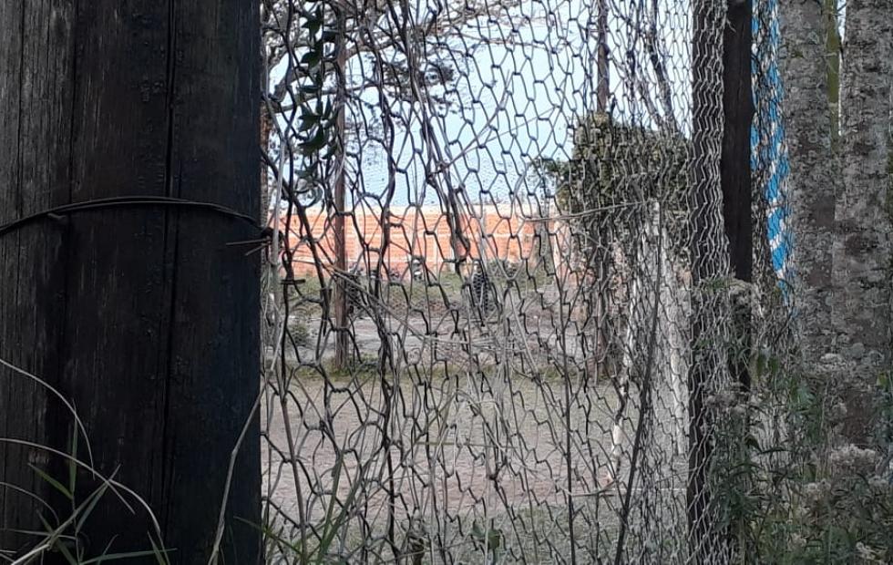 Corrientes: Demoran a 25 personas en un torneo de fútbol clandestino