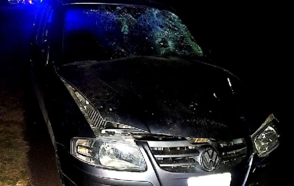 Un Conductor atropelló y mató a un peatón