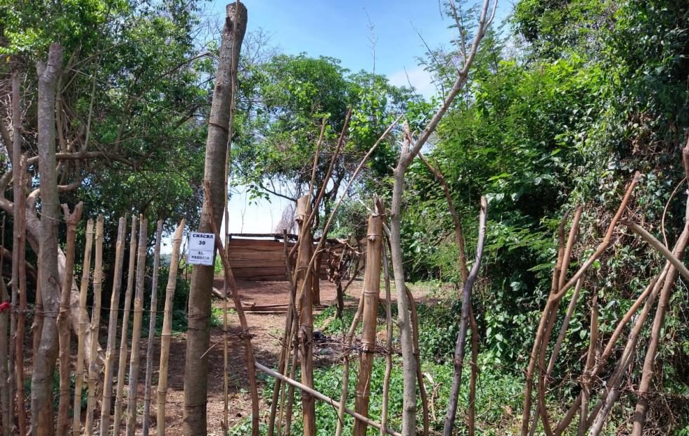Desmontaron una reserva, construyeron caminos y un puente para tomar terrenos en el interior de Corrientes