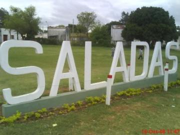 saladas111.jpg