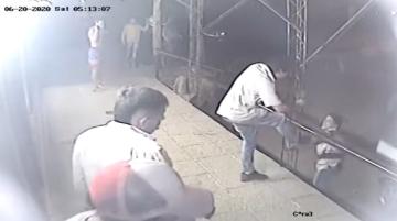 video piraña.jpg