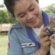 Video: otorgan la medalla de oro a una rata que detecta minas