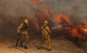 incendios forestal.jpg