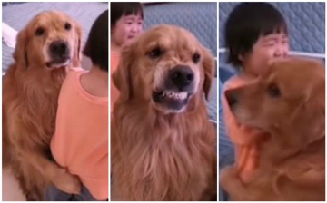 reaccion-del-perro-harry-youtube.jpg