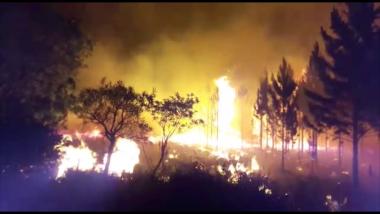 Impactantes imágenes de los incendios forestales en Virasoro (Corrientes)