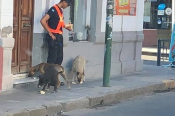 POLICIA PERROS.jpg