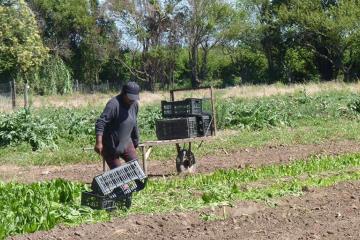 trabajador-rural (1).jpg