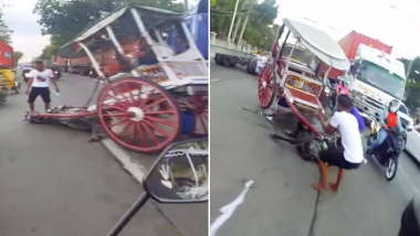 Exhausted Horse Collapses In The Street While Pulling Tourist Carriage
