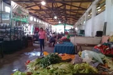 frutas y verduras en el piso.jpg