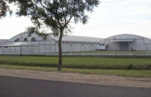 """Nuevo dueño de la exAlpargatas Bella Vista garantizó que """"la planta seguirá trabajando con absoluta normalidad"""""""