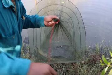 pescador3.jpeg