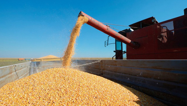 Cosecha-maiz.jpg