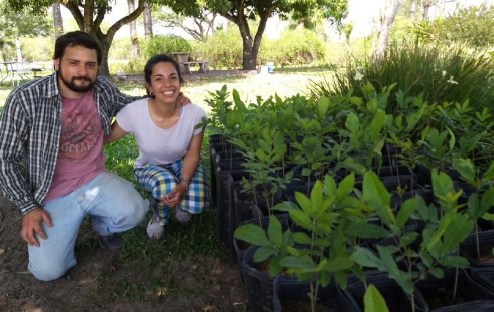 """Distribuyen los primeros plantines de nuez pecán para el proyecto productivo de """"La Familia Crece"""""""
