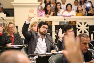 Barrionuevo en la Legislatura.jpg