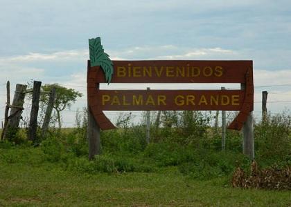 Palmar14-03-16.jpg