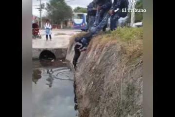 Policías salvaron a un perro en barrio San Ignacio