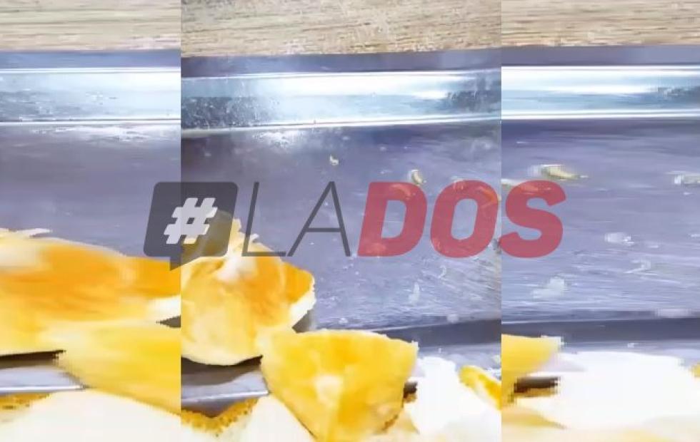 Video: Polémica en Chaco y Corrientes por gusanos en el comedor de la UNNE