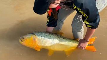 Pescadora rio parana