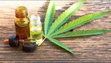 cannabis medicinal.jpg