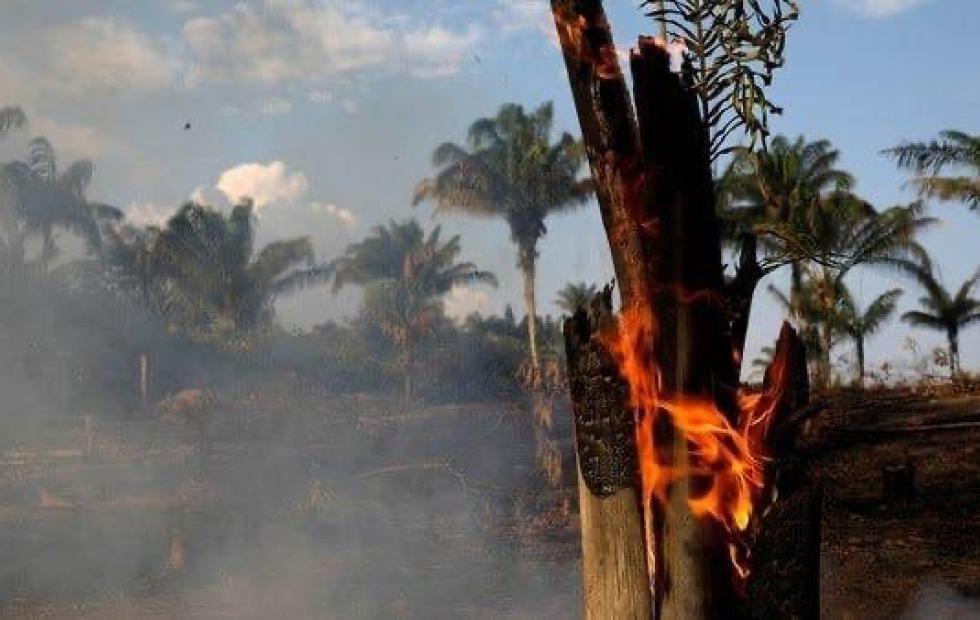 Alarma mundial por el Amazonas: Macri puso a disposición el sistema de emergencias argentino para combatir los incendios