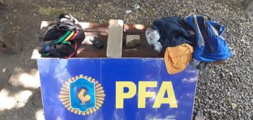 pfa3.jpg