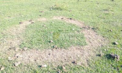 Corrientes: extraña marca en el campo tras una curiosa explosión de luces