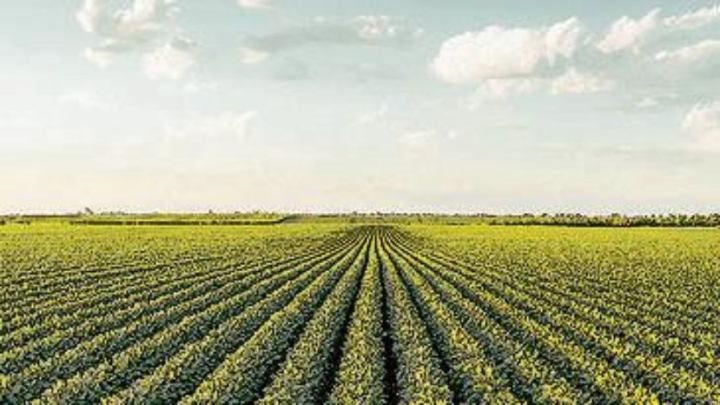 dcc230519-018f02_crop1558574712182.jpg_258117318.jpg