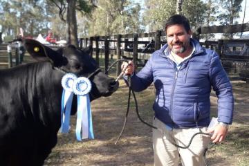 vaca campeona faenada.jpg