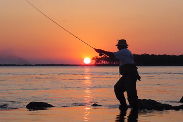 pesca-animal-surubí (1).jpg