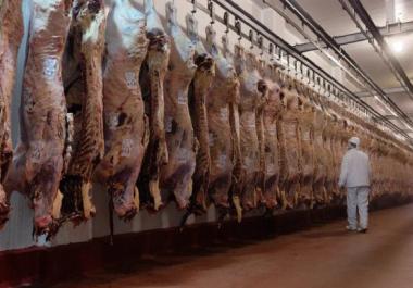 Se oficializó la reapertura parcial de exportación de carne: los detalles del DNU