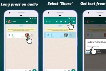 audio-to-whatsapp-768x549.jpg